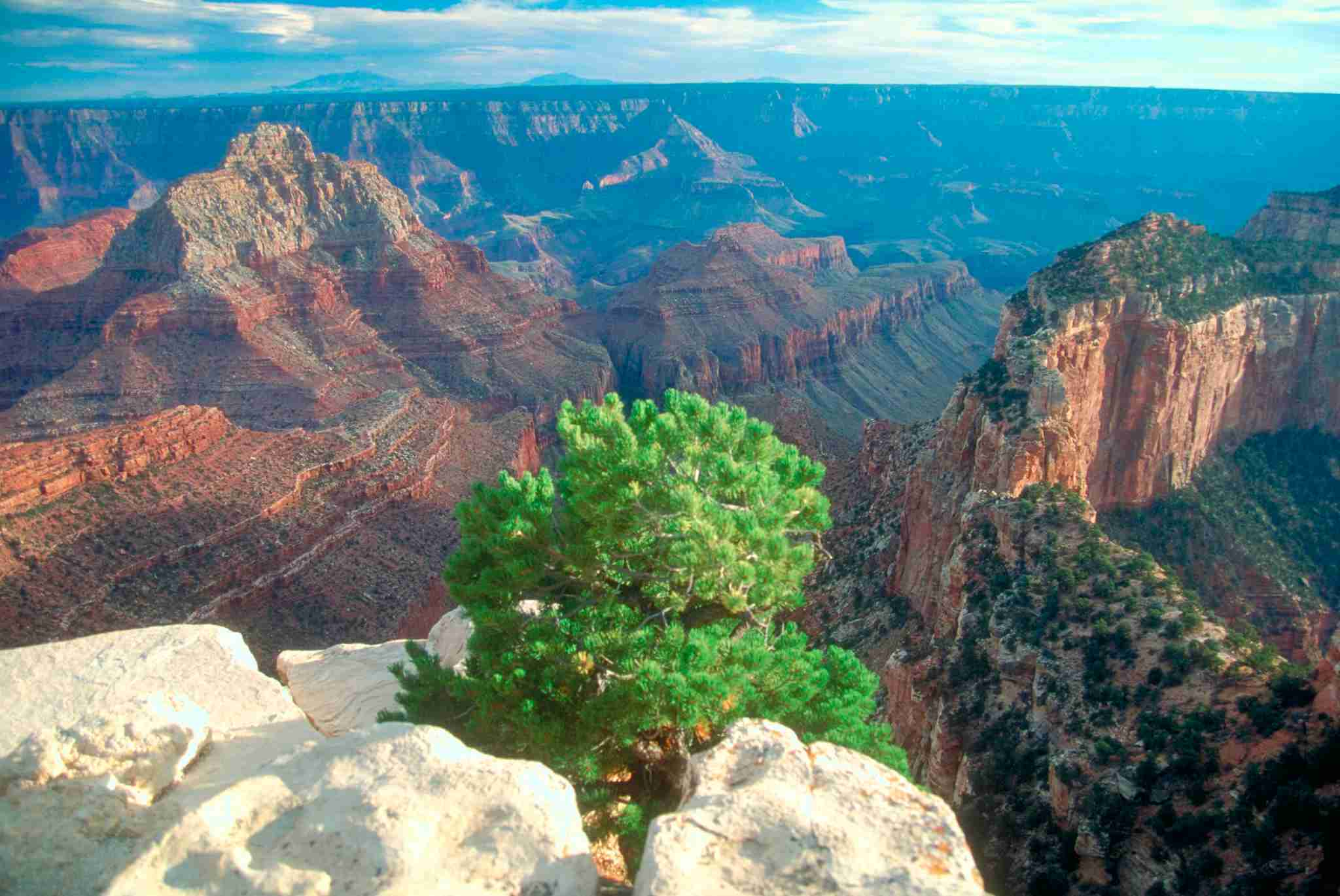 View from Pipe Creek Vista on the south rim of the Grand Canyon National Park, Arizona, USA. (Photo by: MyLoupe/Universal Images Group via Getty Images)