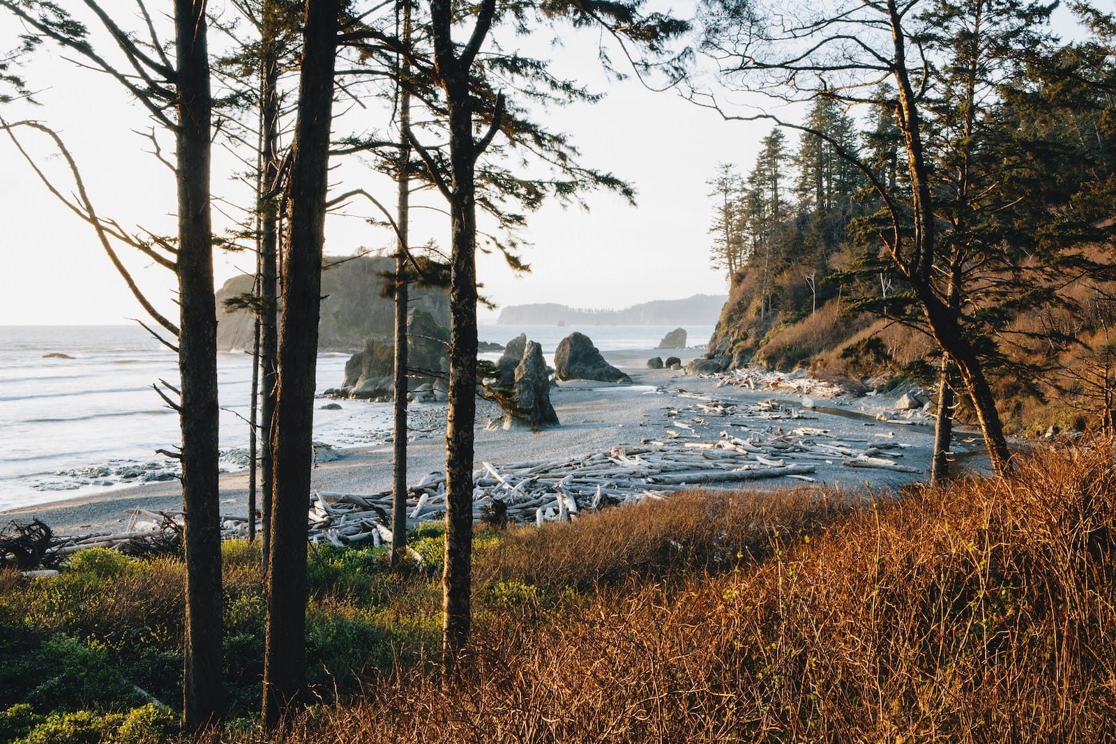 Olympic National Park. (Photo by Mint Images/Getty Images)